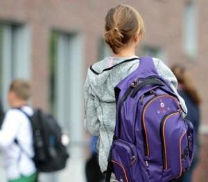 образец жалобы на директора школы от родителей