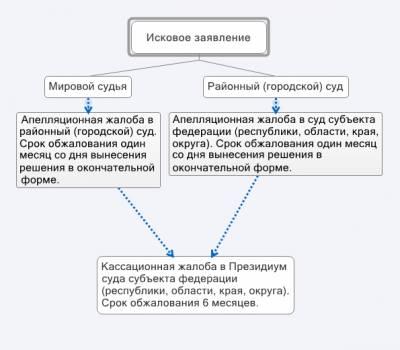 апелляционная жалоба на заочное решение районного суда образец - фото 9